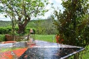 farm Umbria Italy