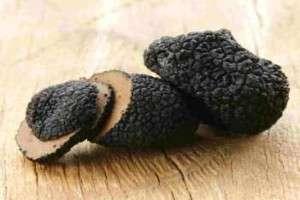 black truffle norcia