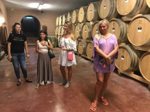 Wine Tour in Umbria